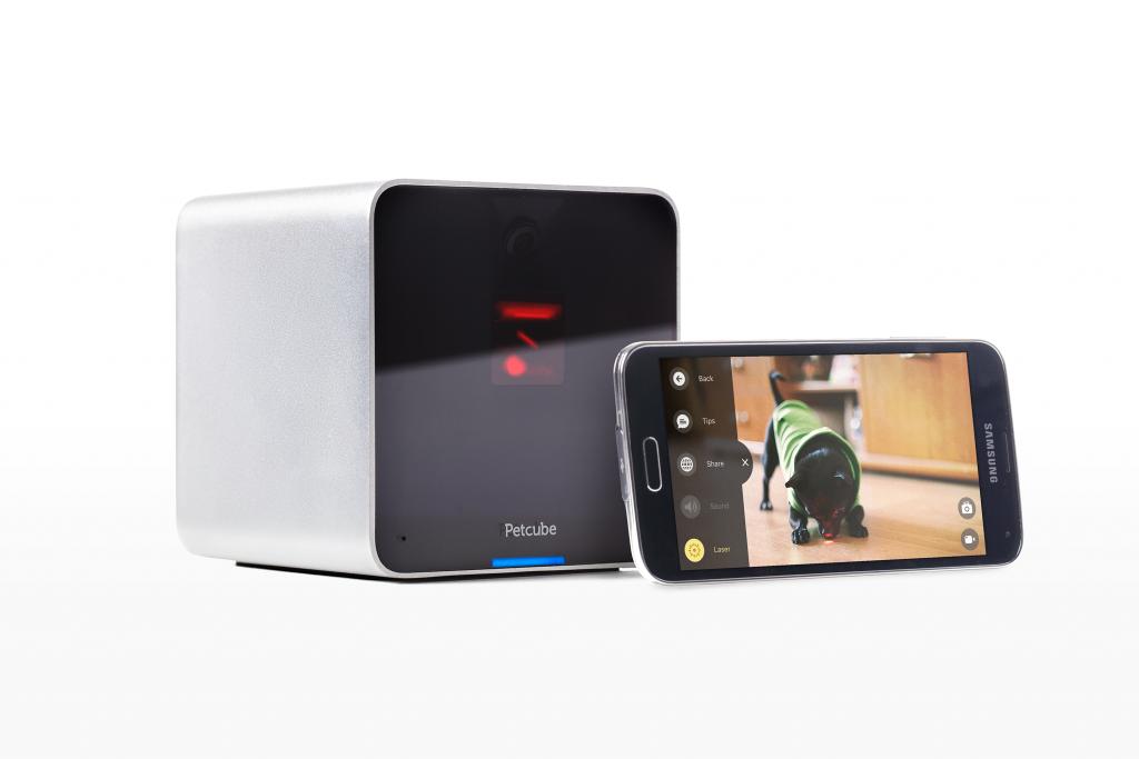 Petcube_Camera_Light_Android
